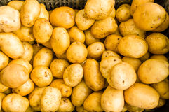 White new potatoes at the market Stock Image