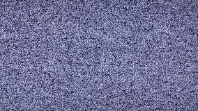 White noise no channel signal - Static white noise TV no signal long  video stock video