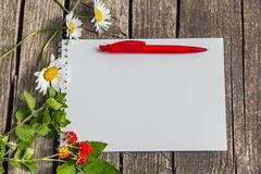 A white notepad with a white spring with a red ball-point pen lies on a rough old gray wooden surface and has a summer. Theme with three daisies, four raspberry Royalty Free Stock Images