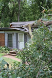 White Oak Fallen on a House Royalty Free Stock Photo