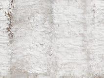 White old rough wall Stock Photos