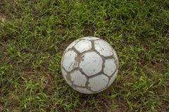 White old shabby soccer ball on blurred green grass royalty free stock photo