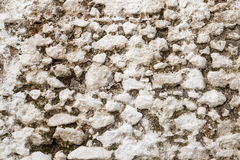 White old stone wall texture with moss. Stock Photos