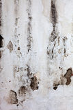 White old wall Stock Photography