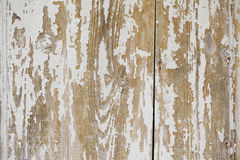 White old wooden backgorund. White old wooden vertical  backgorund Stock Photos