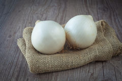 White Onion Royalty Free Stock Photography
