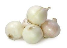 White onion royalty free stock photos