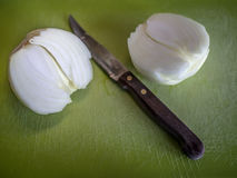 White onion. On a cutting board Royalty Free Stock Image