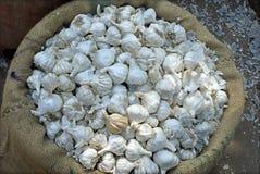 White onion or garlic in sac Royalty Free Stock Photos