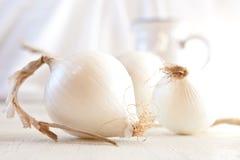 White onions. Still life. Shallow DOF Royalty Free Stock Image