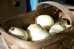 White Onions. In a basket at a roadside fruit and vegetable stand stock photography