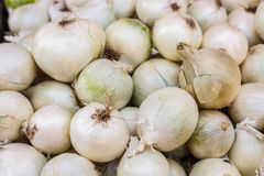 White onions crop. Background Royalty Free Stock Photo