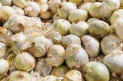 White onions at the farmers market Stock Photo