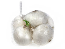 White onions Royalty Free Stock Photos