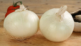 White onions Royalty Free Stock Photography