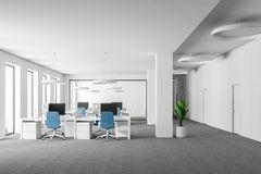 White open space office, blue chairs front view Royalty Free Illustration