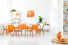 White and orange dining room with painting on the wall, bookshelf in the corner and green plant. In the pot royalty free stock images