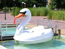 White and Orange Duck Paddle Boat Royalty Free Stock Photo