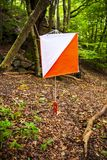 A white and orange orienteering marker flag in the woods. royalty free stock image