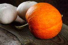 White and an orange pumpkin on boards Stock Photos