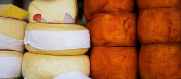 White and oranje cheese. In market Stock Photo