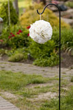 White orb flower ball hanging for a shepard's hook Stock Photo