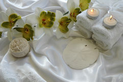 White Orchid. A beautiful white orchid on a handmade silk cloth Stock Photography