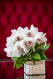 White orchid bouquet in a basket Royalty Free Stock Images