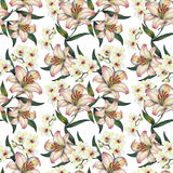 White orchid flower on a branch, lily,watercolor, bouquet, pattern seamless. White flower orchid branch  watercolor handmade  background lily bouquet pattern Stock Images