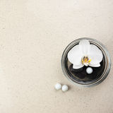 White orchid flower in glass vase with water and stones. Stock Photo