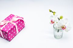 White orchid in glass with pink gift box on white Royalty Free Stock Image