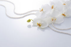 White orchid and pearls Stock Photos
