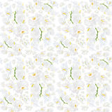 White orchid seamless pattern Royalty Free Stock Photography