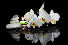 White orchid and spa. Spa composition of white orchid with stone highlighted a candle flame Royalty Free Stock Photography