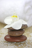 White orchid spa Royalty Free Stock Photo