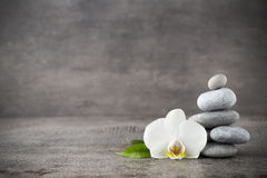 White orchid and spa stones on the grey background. Stock Photography