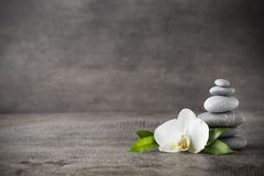 White orchid and spa stones on the grey background. Spa stones and white orchid on the grey background Royalty Free Stock Image