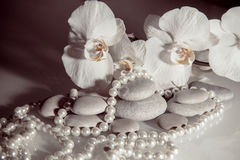 White orchids and pearls Stock Photography