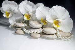 white orchids and pearls Stock Photo