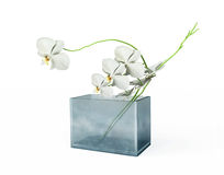White Orchids in  a Vase Royalty Free Stock Images