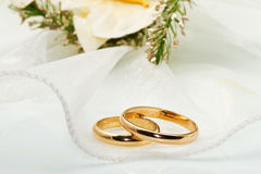 White orchids and wedding rings Royalty Free Stock Photography