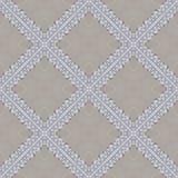 White organic cotton crochet lace background, backdrop for scrapbook Stock Photo
