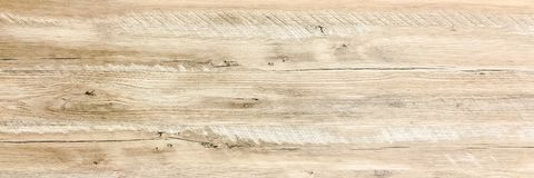 White Organic Wood Texture. Light Wooden Background. Old Washed Wood.  Royalty Free Stock Photography