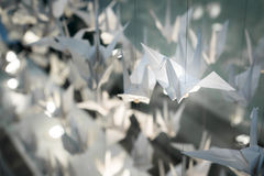 White Origami Birds fly with strings Royalty Free Stock Photo