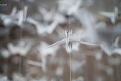 White Origami cranes. Paper closeup swarm macro photo Stock Images