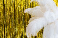 Free White Ostrich Feathers On Gold Texture Background, 20s In Luxurious Retro Flat Lay Creative Concept. Roaring 1920s Style Royalty Free Stock Photography - 201292507