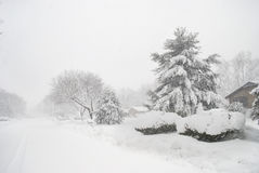 White Out Snow Storm Royalty Free Stock Images