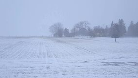 White-Out Snow Storm Blizzard Across Countryside and Farmhouse With Camera Pan.  Heavy Snowing Landscape of Rural Farm Field