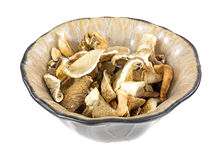 White Oyster Mushrooms In Bowl Side View Royalty Free Stock Photography