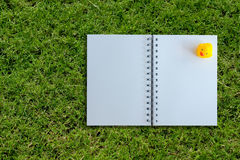 White page of notebook on grass texture Royalty Free Stock Photos